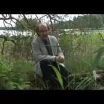 Torstain gospelklassikko: Lasse Heimonen, Ei pisaraakaan liikaa